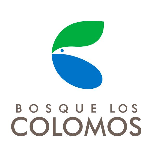 Bosque Los Colomos Cursos de Verano 2017