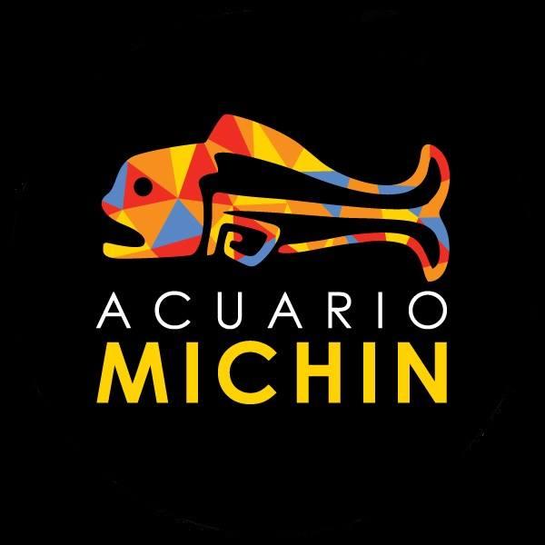 Acuario Michin Cursos de Verano 2017